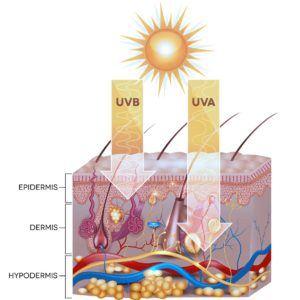 Invloed van de zon op de huid
